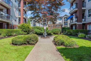"Main Photo: 219 20259 MICHAUD Crescent in Langley: Langley City Condo for sale in ""City Grande"" : MLS®# R2390745"