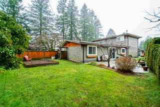 Photo 17: 21247 122 Avenue in Maple Ridge: Northwest Maple Ridge House for sale : MLS®# R2434502