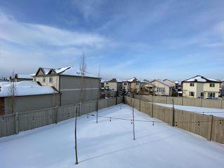 Photo 29: 2022 69A Street in Edmonton: Zone 53 House Half Duplex for sale : MLS®# E4187439