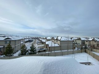 Photo 28: 2022 69A Street in Edmonton: Zone 53 House Half Duplex for sale : MLS®# E4187439