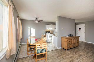 Photo 7: 9 10035 155 Street in Edmonton: Zone 22 Condo for sale : MLS®# E4188635