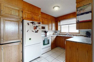 Photo 19: 2923 89 Street in Edmonton: Zone 29 House for sale : MLS®# E4198083