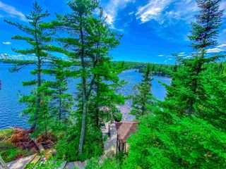 Photo 10: 48 LILY PAD BAY in KENORA: Recreational for sale : MLS®# TB202607