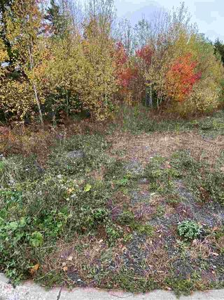 Photo 4: Pineview Crescent in Stellarton: 106-New Glasgow, Stellarton Vacant Land for sale (Northern Region)  : MLS®# 202021887