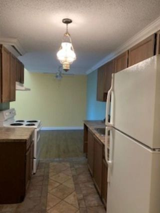 """Photo 7: 357 2821 TIMS Street in Abbotsford: Abbotsford West Condo for sale in """"PARKVIEW ESTATES"""" : MLS®# R2513444"""