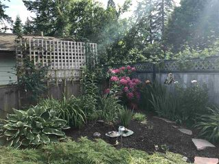 Photo 37: 3809 207 Street in Langley: Brookswood Langley House for sale : MLS®# R2521206