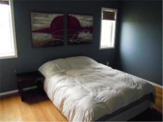 Photo 7: 176 LEON BELL Drive in WINNIPEG: Fort Garry / Whyte Ridge / St Norbert Residential for sale (South Winnipeg)  : MLS®# 1018542
