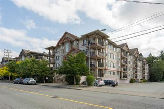 """Photo 1: 312 5438 198 Street in Langley: Langley City Condo for sale in """"CREEKSIDE ESTATES"""" : MLS®# R2394421"""