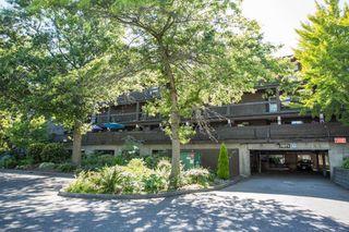 """Photo 25: 205 7871 NO. 1 Road in Richmond: Quilchena RI Condo for sale in """"BEACON COVE"""" : MLS®# R2481395"""