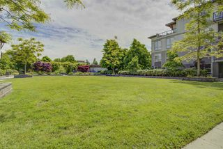 "Photo 13: 132 15918 26 Avenue in Surrey: Grandview Surrey Condo for sale in ""THE MORGAN"" (South Surrey White Rock)  : MLS®# R2456233"