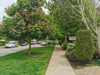 """Photo 14: 132 15918 26 Avenue in Surrey: Grandview Surrey Condo for sale in """"THE MORGAN"""" (South Surrey White Rock)  : MLS®# R2456233"""