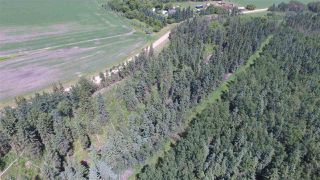 Photo 37: 232038 TWP RD 470: Rural Wetaskiwin County House for sale : MLS®# E4204629
