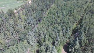 Photo 35: 232038 TWP RD 470: Rural Wetaskiwin County House for sale : MLS®# E4204629