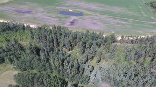 Photo 39: 232038 TWP RD 470: Rural Wetaskiwin County House for sale : MLS®# E4204629