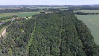 Photo 36: 232038 TWP RD 470: Rural Wetaskiwin County House for sale : MLS®# E4204629