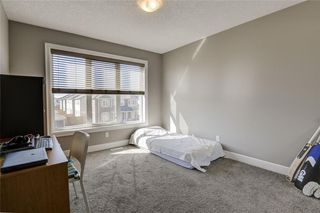 Photo 33: 15 CITYSCAPE Park NE in Calgary: Cityscape Detached for sale : MLS®# A1016548