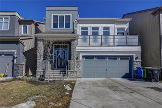 Main Photo: 15 CITYSCAPE Park NE in Calgary: Cityscape Detached for sale : MLS®# A1016548