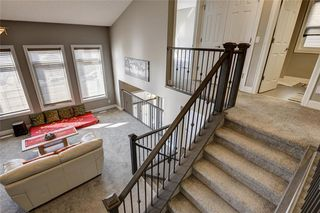 Photo 30: 15 CITYSCAPE Park NE in Calgary: Cityscape Detached for sale : MLS®# A1016548