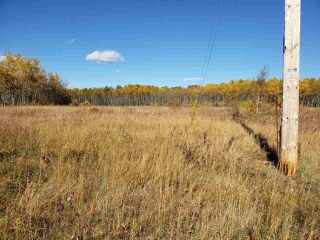 Photo 1: 120 56514 Rg Rd 60: Rural St. Paul County Rural Land/Vacant Lot for sale : MLS®# E4219967
