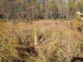 Photo 3: 120 56514 Rg Rd 60: Rural St. Paul County Rural Land/Vacant Lot for sale : MLS®# E4219967