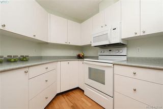 Photo 10: 303 3133 Tillicum Road in VICTORIA: SW Tillicum Condo Apartment for sale (Saanich West)  : MLS®# 419394
