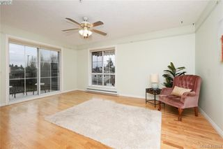 Photo 2: 303 3133 Tillicum Road in VICTORIA: SW Tillicum Condo Apartment for sale (Saanich West)  : MLS®# 419394