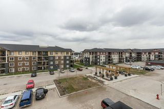Photo 26: 3419 81 LEGACY Boulevard SE in Calgary: Legacy Apartment for sale : MLS®# C4293942