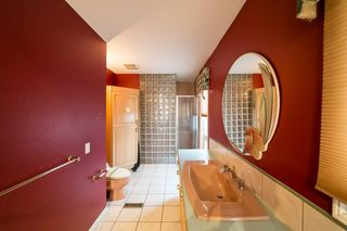 Photo 20: 31 BERRYMORE Drive: St. Albert House for sale : MLS®# E4204287