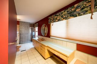 Photo 19: 31 BERRYMORE Drive: St. Albert House for sale : MLS®# E4204287
