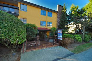 "Photo 4: 203 215 N TEMPLETON Drive in Vancouver: Hastings Condo for sale in ""PORTO VISTA"" (Vancouver East)  : MLS®# V797867"