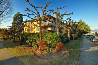 "Photo 3: 203 215 N TEMPLETON Drive in Vancouver: Hastings Condo for sale in ""PORTO VISTA"" (Vancouver East)  : MLS®# V797867"