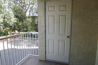 Photo 13: 206 11104 109 Avenue in Edmonton: Zone 08 Condo for sale : MLS®# E4176132