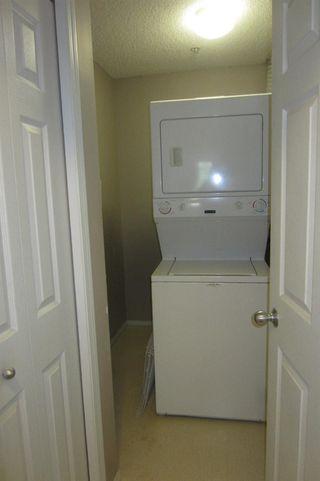 Photo 8: 206 11104 109 Avenue in Edmonton: Zone 08 Condo for sale : MLS®# E4176132