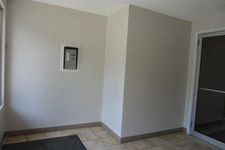 Photo 19: 206 11104 109 Avenue in Edmonton: Zone 08 Condo for sale : MLS®# E4176132