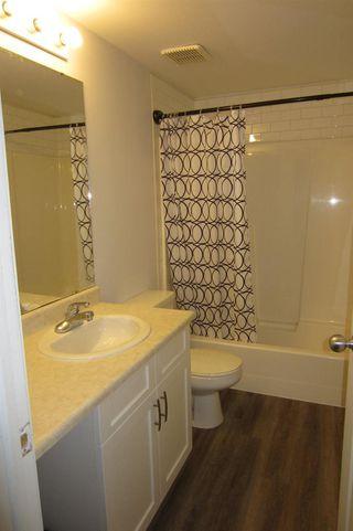 Photo 9: 206 11104 109 Avenue in Edmonton: Zone 08 Condo for sale : MLS®# E4176132