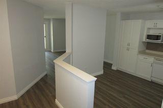 Photo 5: 206 11104 109 Avenue in Edmonton: Zone 08 Condo for sale : MLS®# E4176132