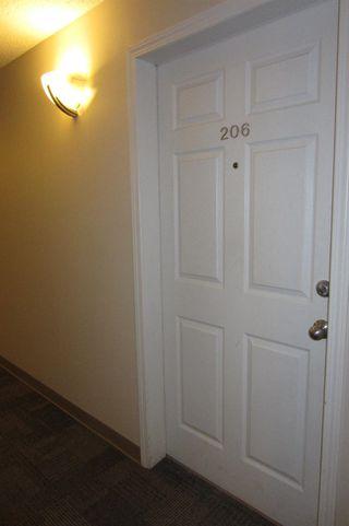 Photo 16: 206 11104 109 Avenue in Edmonton: Zone 08 Condo for sale : MLS®# E4176132