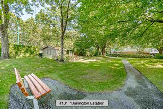 "Photo 36: 101 2963 BURLINGTON Drive in Coquitlam: North Coquitlam Condo for sale in ""Burlington Estates"" : MLS®# R2496011"