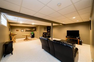 Photo 37: 19 Darwell Terrace: St. Albert House for sale : MLS®# E4221110