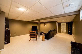 Photo 40: 19 Darwell Terrace: St. Albert House for sale : MLS®# E4221110