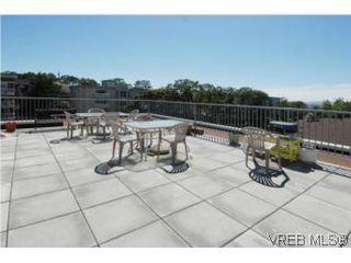 Photo 11: 308 1366 Hillside Ave in VICTORIA: Vi Oaklands Condo for sale (Victoria)  : MLS®# 504943