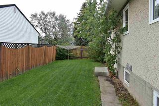Photo 11: 10205 62 Street in Edmonton: Zone 19 House for sale : MLS®# E4173156