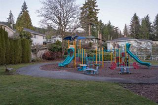 Photo 20: 3840 PROSPECT Road in North Vancouver: Upper Lonsdale House for sale : MLS®# R2466657