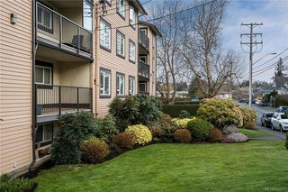 Photo 17: 106 3258 Alder St in Saanich: SE Quadra Condo Apartment for sale (Saanich East)  : MLS®# 835971