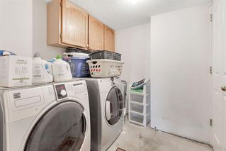 Photo 31: 236 CORAL SPRINGS Place NE in Calgary: Coral Springs Detached for sale : MLS®# A1019193