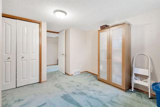 Photo 29: 236 CORAL SPRINGS Place NE in Calgary: Coral Springs Detached for sale : MLS®# A1019193