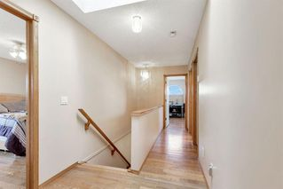 Photo 15: 236 CORAL SPRINGS Place NE in Calgary: Coral Springs Detached for sale : MLS®# A1019193