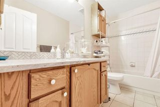 Photo 24: 236 CORAL SPRINGS Place NE in Calgary: Coral Springs Detached for sale : MLS®# A1019193