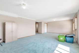 Photo 27: 236 CORAL SPRINGS Place NE in Calgary: Coral Springs Detached for sale : MLS®# A1019193
