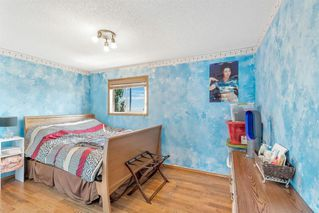 Photo 21: 236 CORAL SPRINGS Place NE in Calgary: Coral Springs Detached for sale : MLS®# A1019193